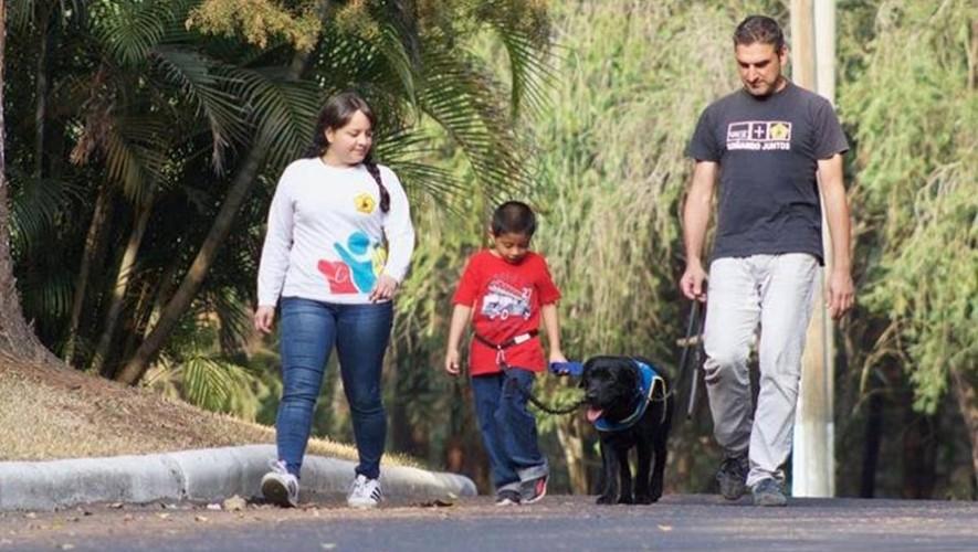Kimono es un perro de asistencia para niños con autismo en Guatemala
