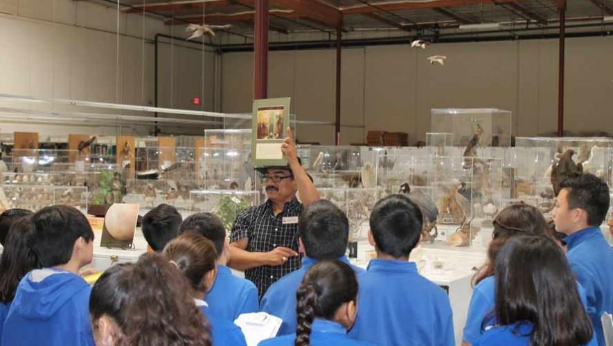 René Corado biólogo de uno de los museos de aves más grande del mundo el Western Foundation of Vertebrate Zoology