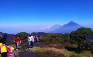 Apoya a la Lucha contra el Cáncer de mama y participa en esta actividad recreativ en el Volcán Pacaya. (Foto: Pata de Chucho)