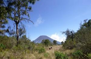 (Foto: Go2Guate)