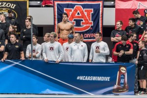 (Foto: Auburn Swimming and Diving)