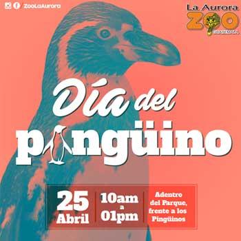 Asiste a la celebración del Día Mundial del Pingüino en el Zoológico La Aurora 2017