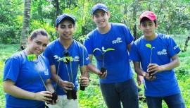 Buscan voluntarios para el Día del Millón de Árboles 2017