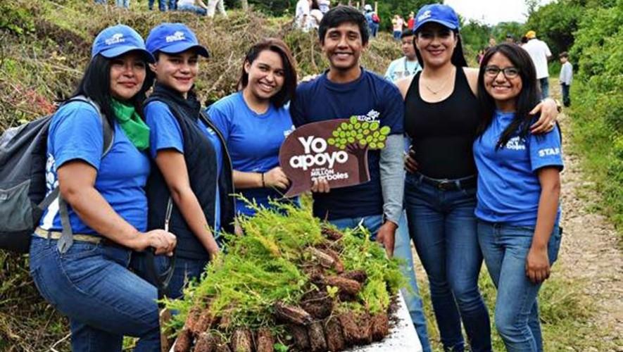 Buscan voluntarios para que sean parte del Día del Millón de Árboles 2017