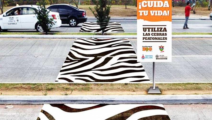 Calles de la Ciudad de Guatemala con coloridos y creativos pasos peatonales