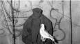 Exposición Asylum Of The Birds de Roger Ballen en La ERRE   Junio 2017