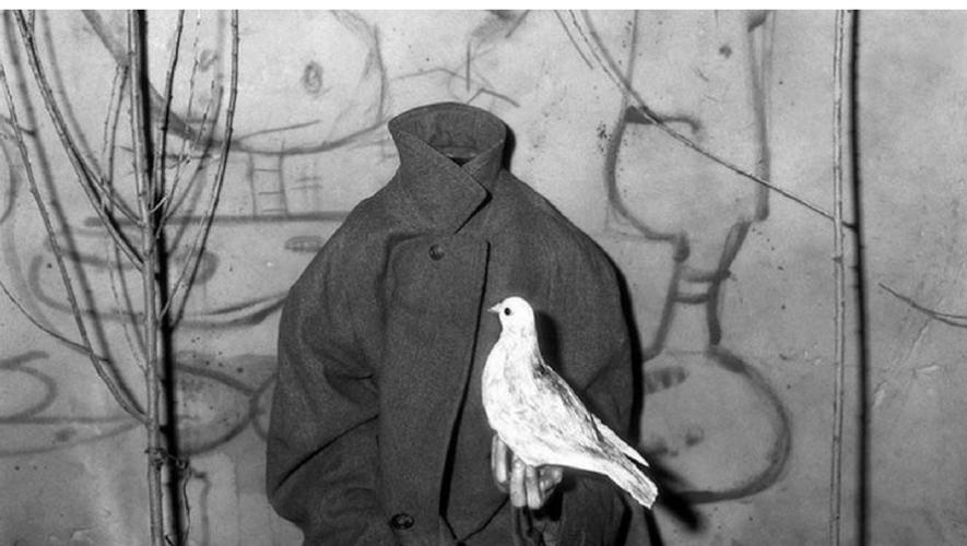 Exposición Asylum Of The Birds de Roger Ballen en La ERRE | Junio 2017