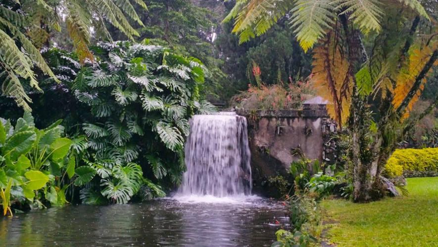 Finca El Zapote En Escuintla Destinos De Guatemala Para