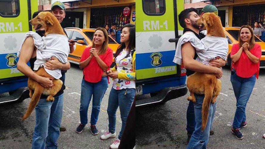 Guatemaltecos rescatan a perro que había caído en un barranco de Mixco