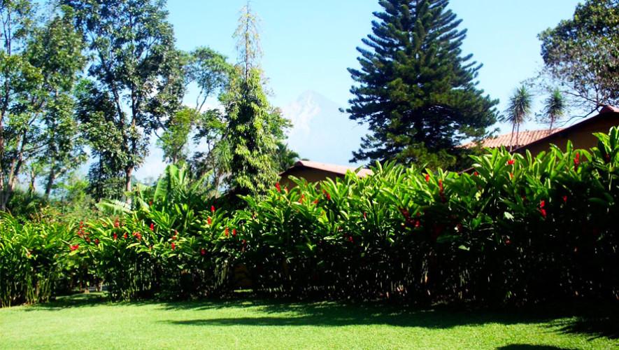 Hotel y bungalows el jard n retalhuleu hoteles rodeados for Bungalows el jardin retalhuleu guatemala