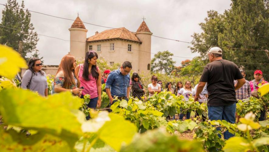 Tour de degustación de vino en Chateau Defay   Julio 2017