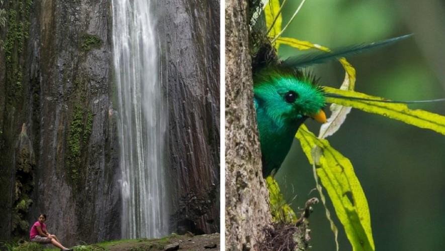 Viaje a Cataratas de la Igualdad y Refugio del Quetzal | Septiembre 2017