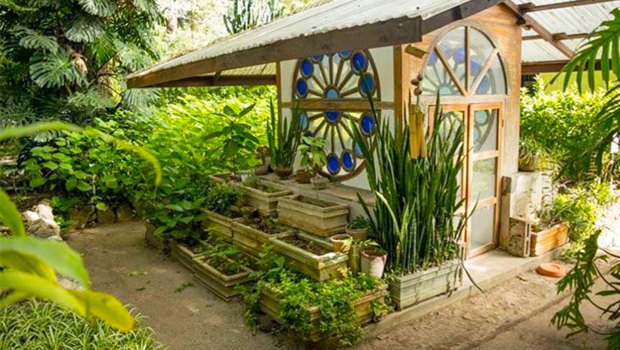 Jard n bot nico ciudad de guatemala lugares tur sticos for Centro de eventos jardin botanico