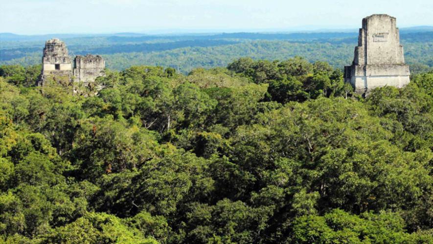Tikal es uno de las zonas arqueológicas que te dejarán sin palabras