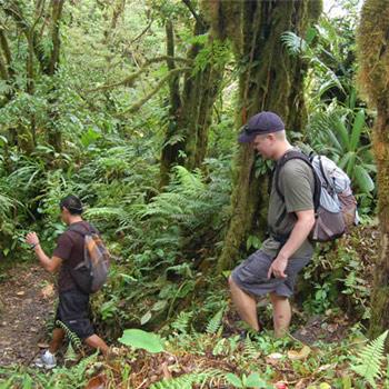 Trekking por la selva petenera