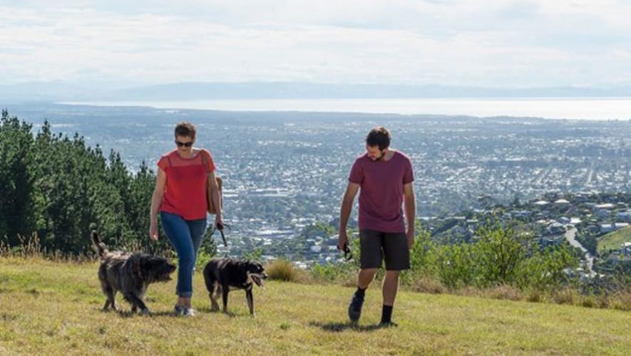 Viaje para realizar senderismo con tu mascota   Septiembre 2017