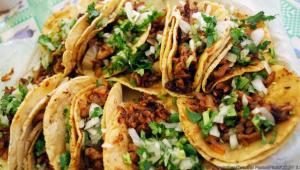All You Can Eat de tacos y cerveza en El Pinche |Agosto 2017