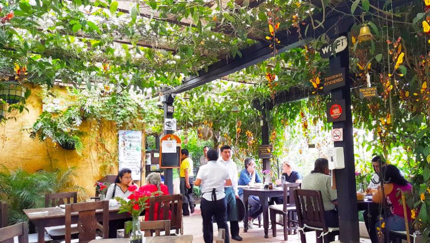 Restaurante natural la escalonia restaurantes rodeados for Vivero de cafe pdf