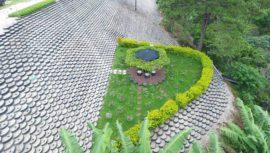 Muro ecológico más grande de Guatemala destaca en China Xinhua News