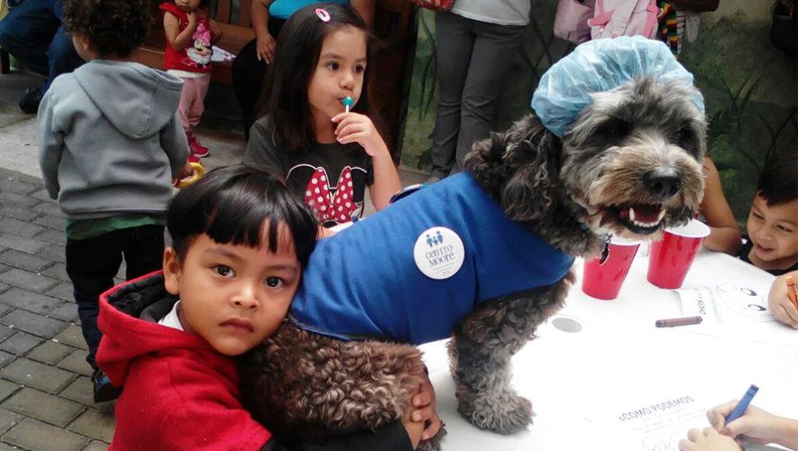 Tomasito es un perro voluntario que alegra a niños