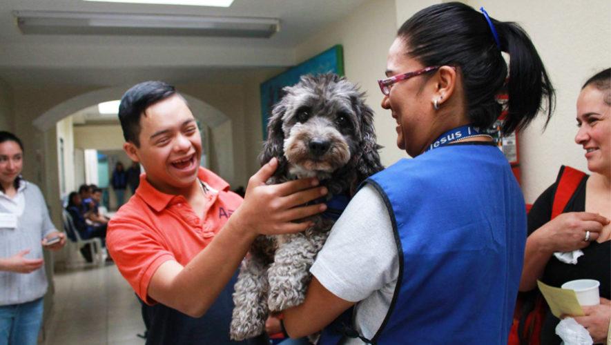 Tomasito es un perro voluntario que alegra a niños de Guatemala