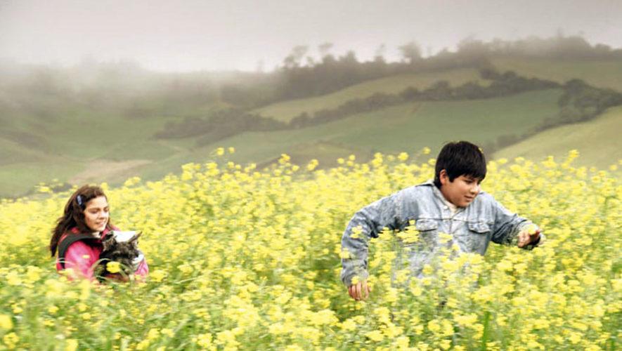 Proyección gratuita de la película Jardín de Amapolas   Septiembre 2017