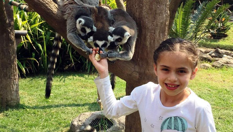 Celebración del Día del Niño en Zoológico la Aurora