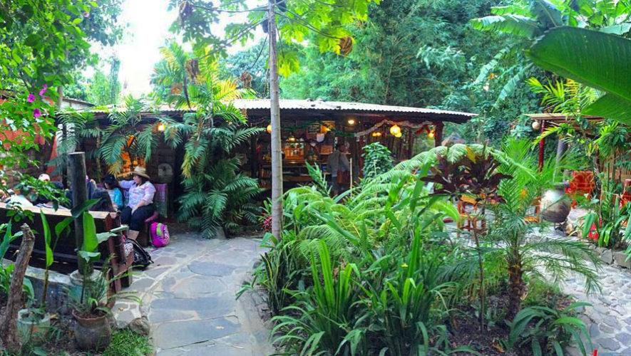 Il Giardino, comida casera en medio de la naturaleza - Lugares ...