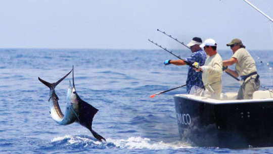 Pesca Deportiva | Guatemala.com