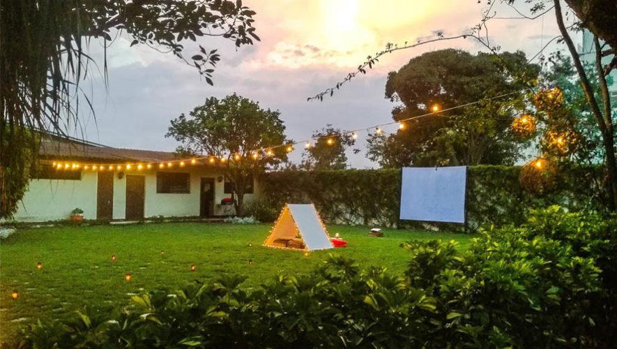 Jard n los eucalyptus espacios amplios al aire libre for Jardin jardin al aire libre