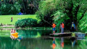 Día de campo en Finca el Zapote   Noviembre 2017
