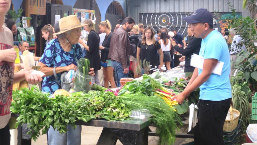 Mercado de productos orgánicos en Caoba Farms   Noviembre 2017