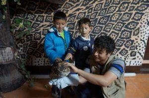 (Foto: Parque Zoológico Minerva, Quetzaltenango)