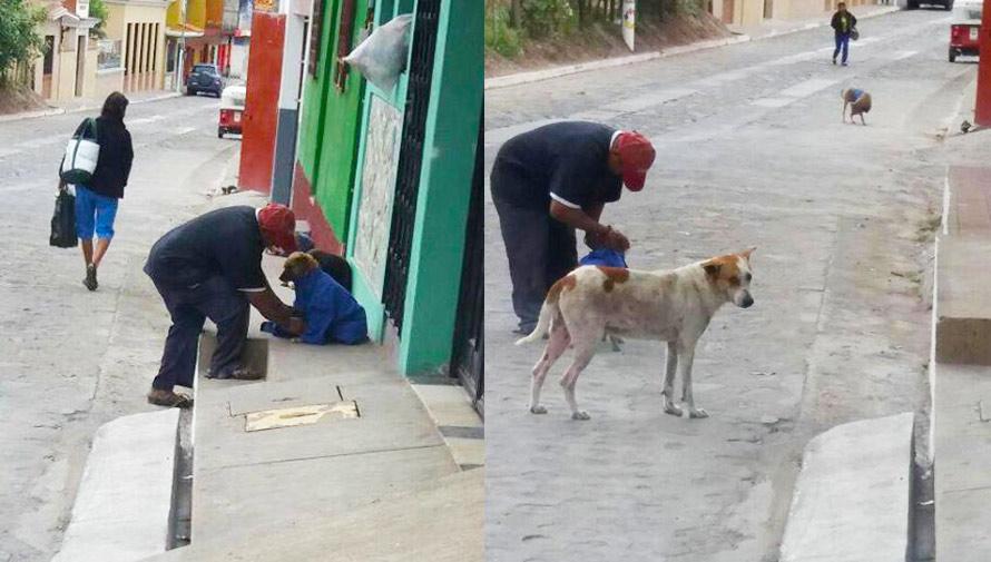 Don Julio abrigó a varios perros de la calle en Esquipulas
