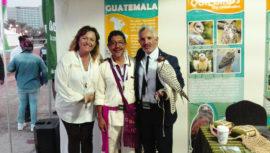 Guatemala participó por primera vez en el Festival Internacional de Cetrería 2017