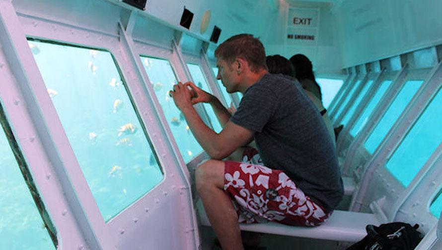 Tour para realizar snuba y paseo por barco acuario