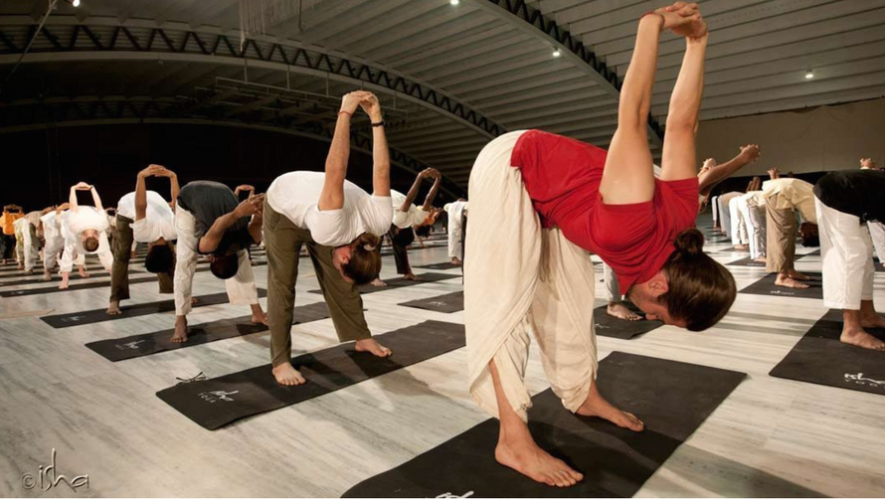 Fiesta de Yoga en 1001 Noches   Diciembre 2017