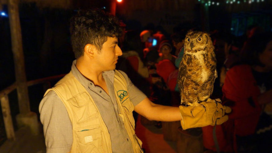 Recorrido nocturno en Zoológico Minerva, Quetzaltenango | Diciembre 2017