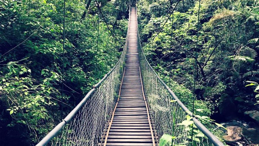 Image result for reserva natural atitlán