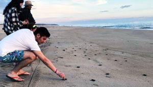 Viaje para liberar tortugas en Monterrico | Septiembre 2018