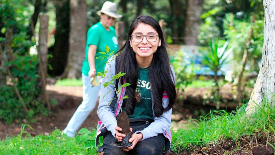 Convocatoria de voluntarios para sembrar árboles en Guatemala, julio 2018