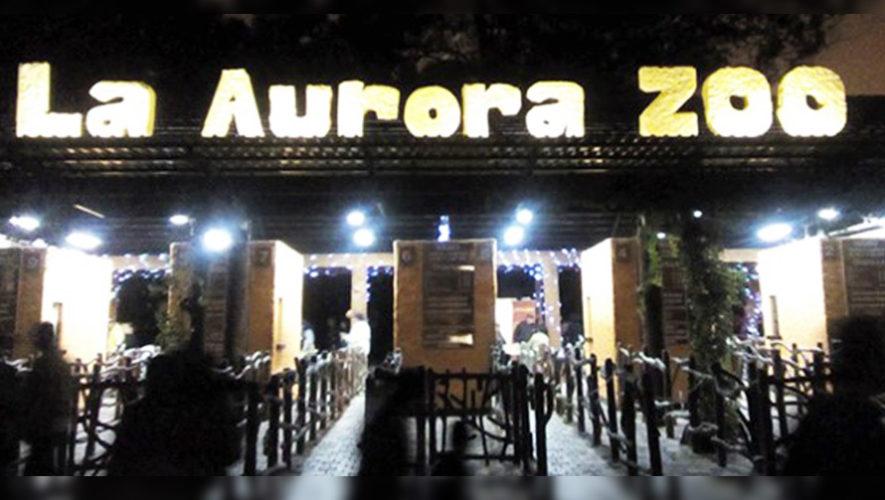 Noches de Luna en el Zoológico La Aurora   Julio 2018