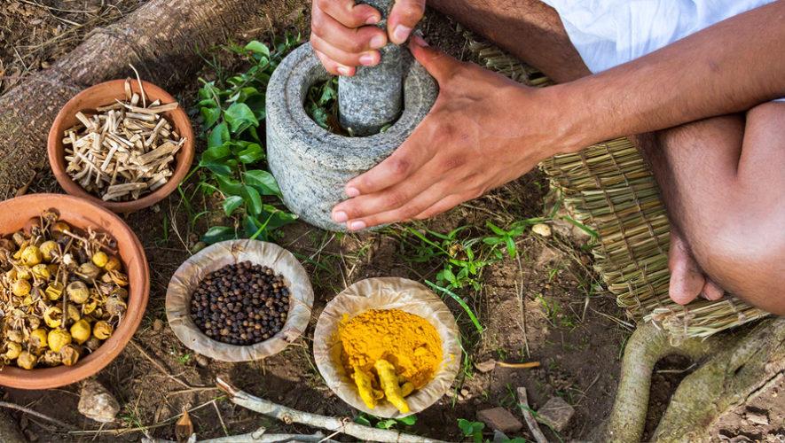 Taller de ayurveda y medicina natural | Agosto 2018