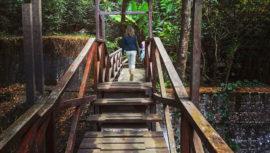 Fincas que puedes visitar en Antigua Guatemala