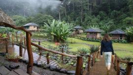El Santuario Natural El Tular que se encuentra ubicado en el Departamento de Guatemala