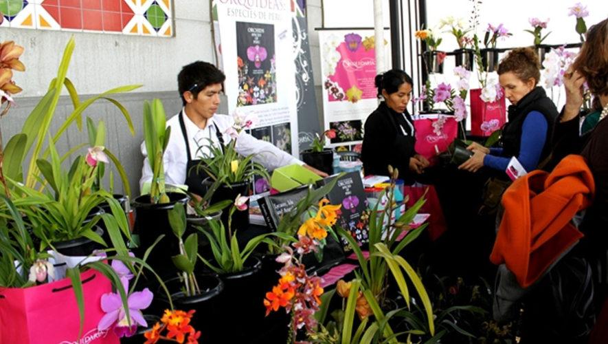 Exposición de plantas exóticas en Antigua Guatemala | Septiembre 2018