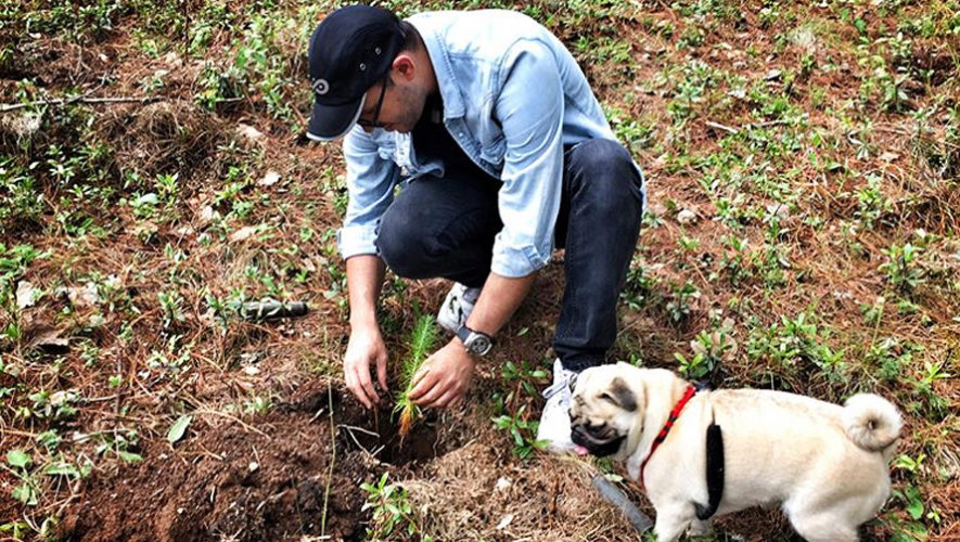 Jornada de reforestación en San Juan del Obispo | Septiembre 2018