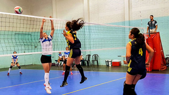voleibol de sala