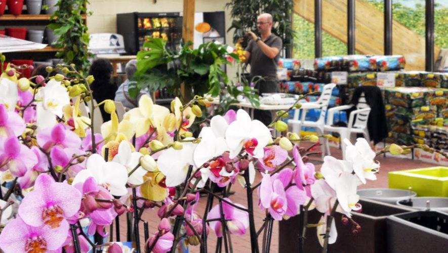 Taller para aprender a cultivar orquídeas en Saúl L'Osteria | Octubre 2018