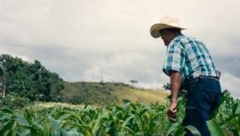 Binem: corto artístico que muestra al mundo la junglas y paisajes de Petén